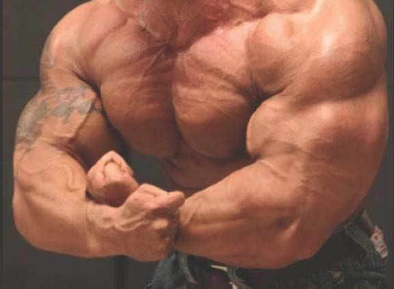 dexamethasone for muscle building